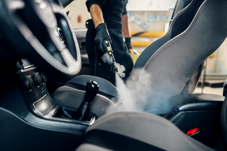 steam cleaner for car detailing
