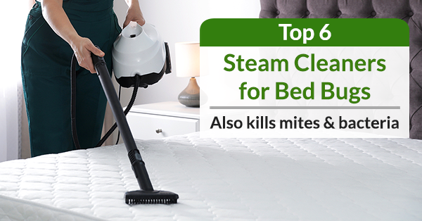 Best Steam Cleaners to kill Bed Bugs